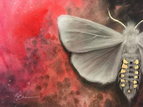 White Moth ORIGINAL