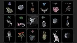 desktop wallpaper cards