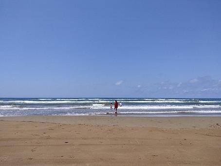 近くの海へ…