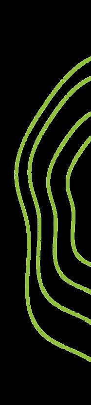 swirls%404x_edited.png