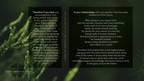Rooted Desktop Graphic-02.jpg