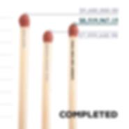 Ignite Infographic-01.jpg
