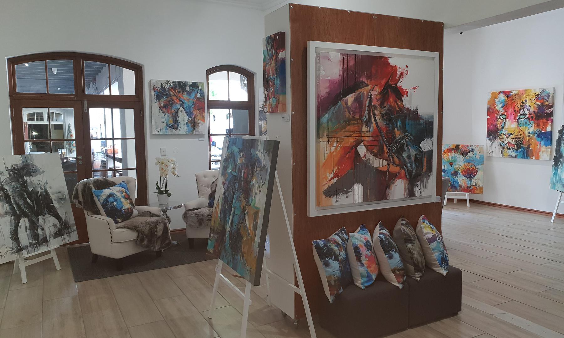 Franschhoek Gallery 4