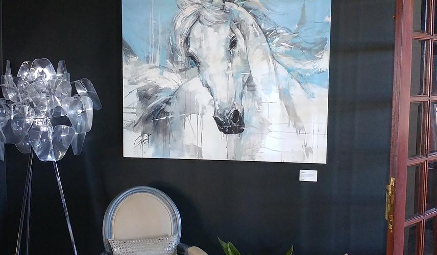 Privite Home Exhibition