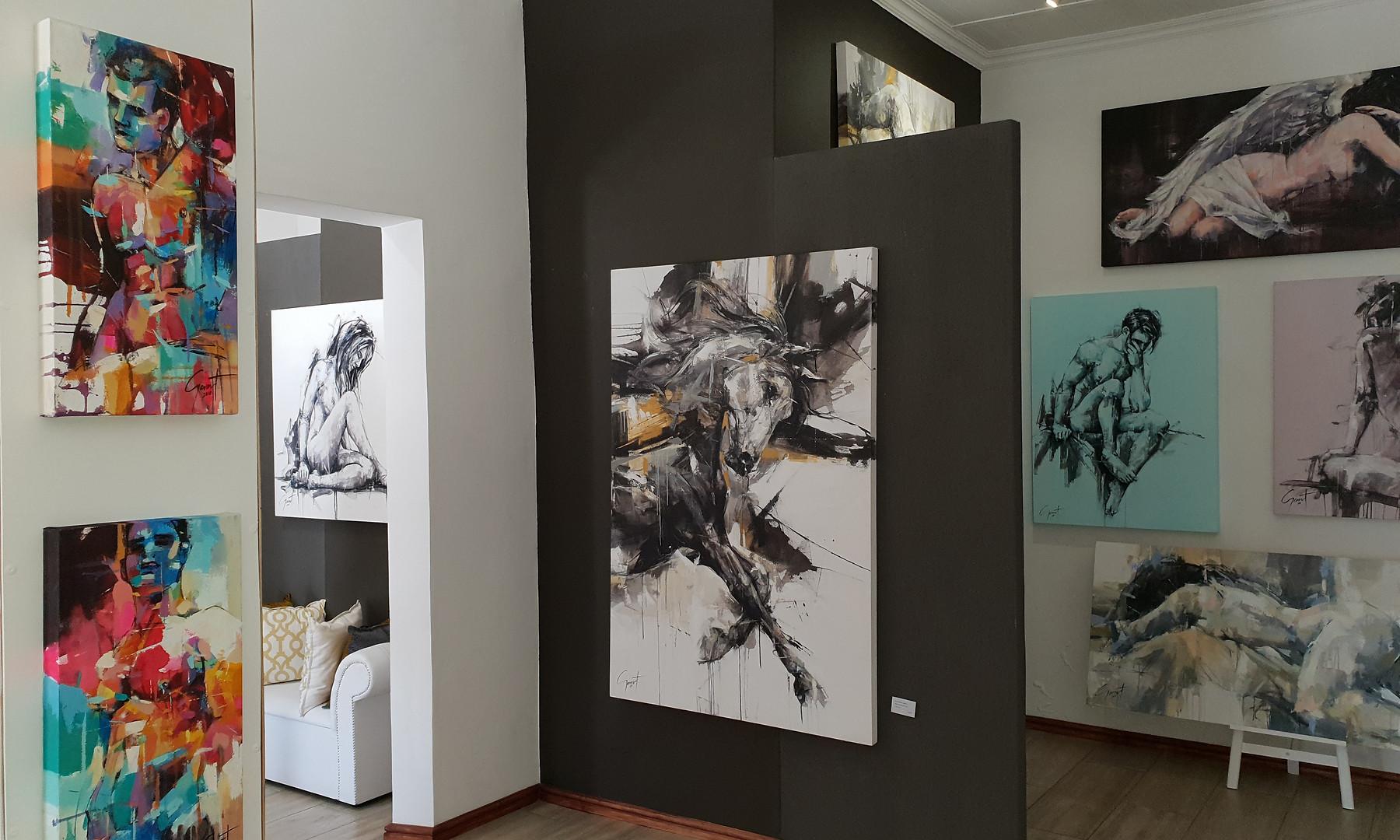 Franschhoek Gallery 6