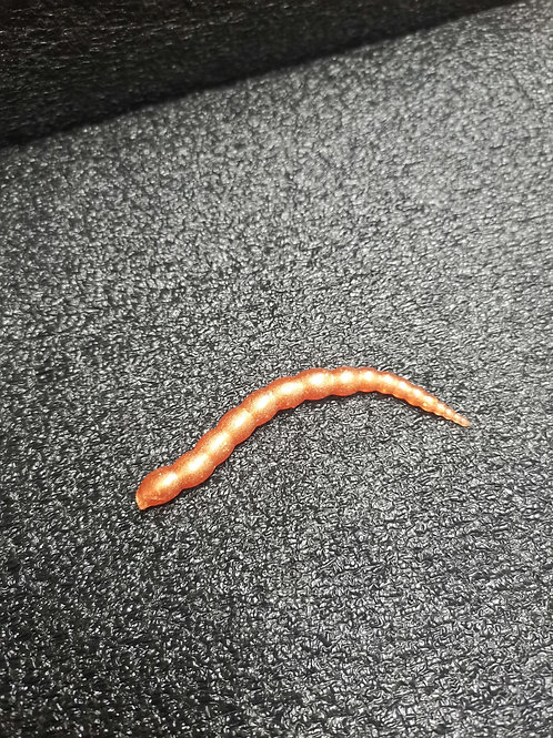 Pro Worms