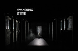 AWAKENING_2012_HK__017_COPY