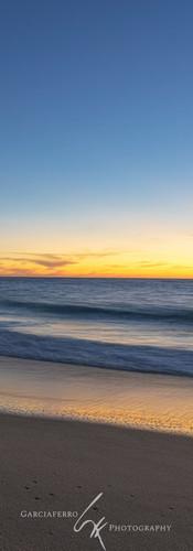 Ballenas   Cabo San Lucas