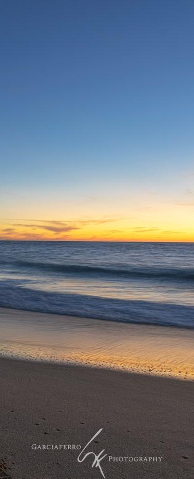 Ballenas | Cabo San Lucas