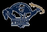 184-1840764_prospectleague-prospect-leag
