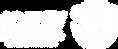 Logo Idesv Branco.png