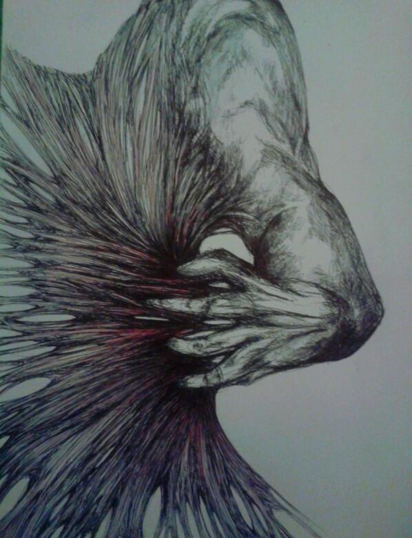 Ilustración de Barbara Murchi