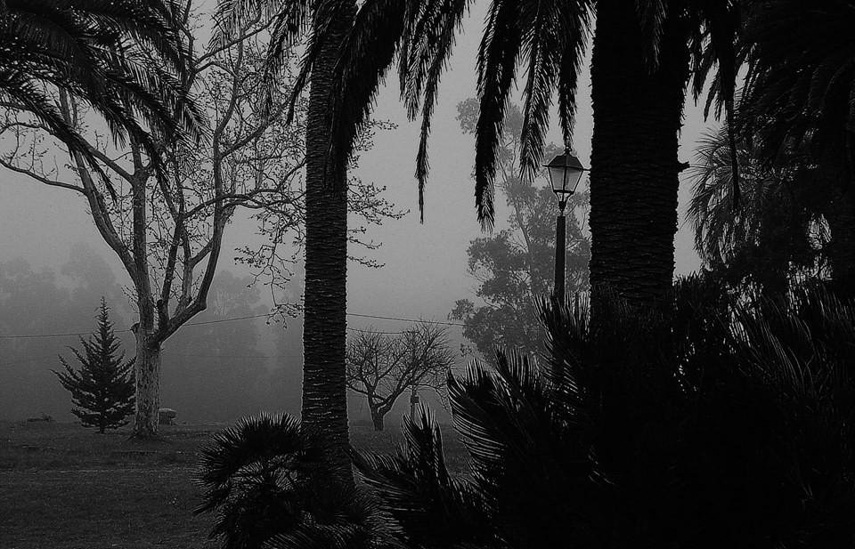Foto: Maria Cristina Nieto