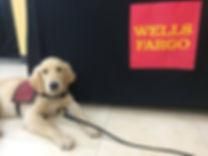 Fargo's new mom is a combat veteran. Thanks, Wells Fargo!