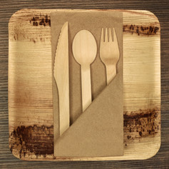 Birch Cutlery:Palm Plate:Recycled Napkin