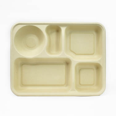 Compostable 5 section food plate