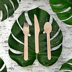 Birch Cutlery.png