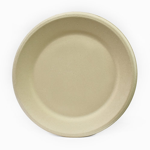 """12"""" (305mm) Plate"""