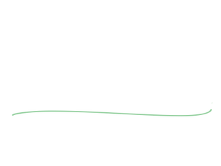 quill line (1).png