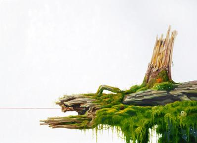 Asleep in the Moss