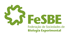 fesbe.png