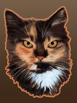RAH Cat Collection