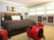 BedBug_RoomEquip.jpg