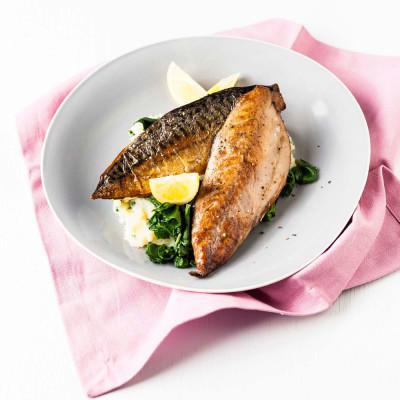 mackerel for weight loss