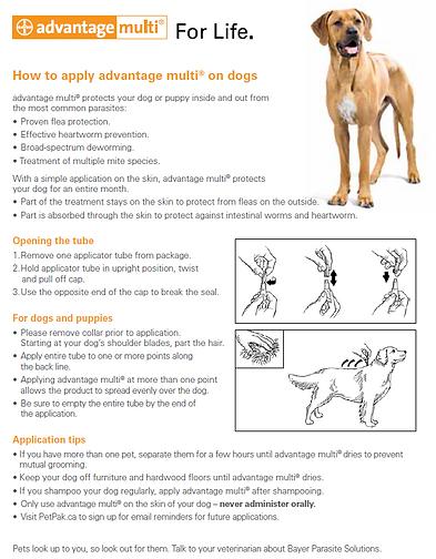 Advantage Multi How to Apply (002) (1).P