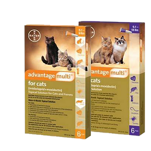 10688-0-advantage-multi-for-cats-rx.png