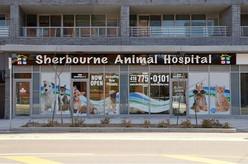 Sherbourne Animal Hospital