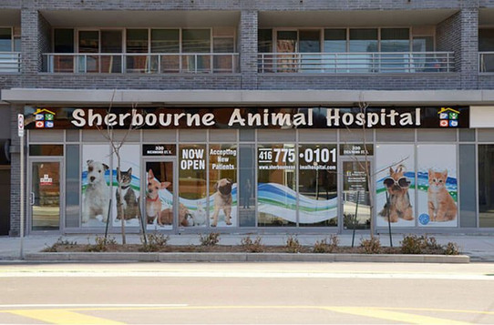 Sherbourne Animal Hospital