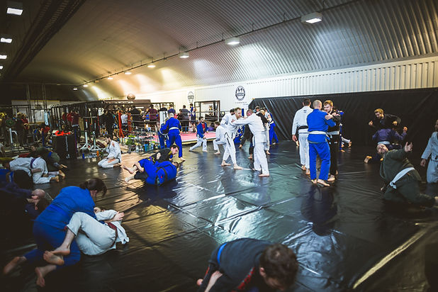 bjj mat training.jpg