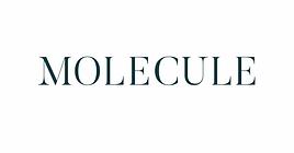 MOLECULE_LOGO_OUTLINE_COLORS-03.webp