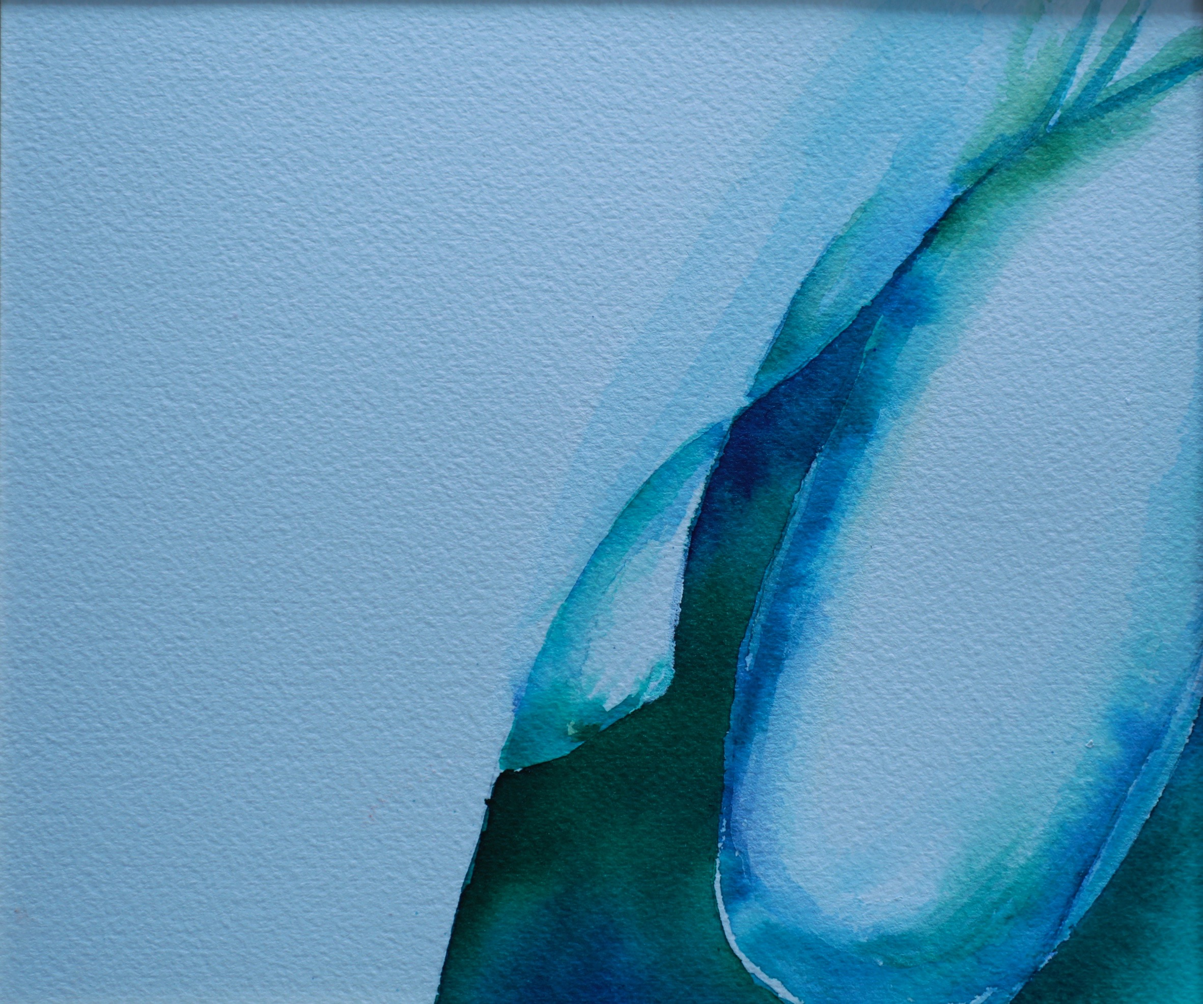Renata blue 2