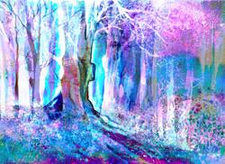 woodland 22