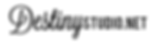 DS Straight Logo.png