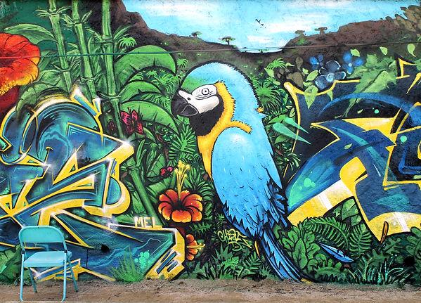ARA Bleu Fresque Graffiti Chipie