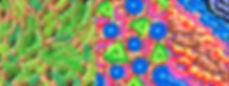 """""""Couleurs artichok Syndrome"""" - Une exposition de Dorian Roulet au café Galerie le 14 septembre 2017 à Lyon 1er - dessins au feutres, Exposition de remèdes de Dorian Roulet  """"(...)Ce n'est pas un travail, d'ailleur il parait que le mot travail vient d'un instrument de torture. Là je dirai que c'est comme une drogue, ou plutôt un médicament, on commence et on ne peut plus s'arrêter, parce que tout simplement cela fait du bien, ça permet de relâcher la pression, on parle de """"lâcher prise"""" pas besoin d'être addictologue, art-thérapeute ou je ne sais quoi pour comprendre ça.(...)"""""""