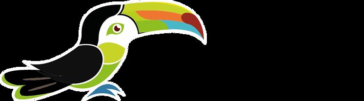 logo-Cook-vert-fond-clair.png