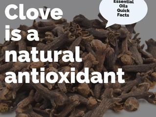 Essential Oil Quick Facts: Clove