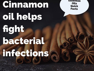 Essential Oil Quick Facts: Cinnamon