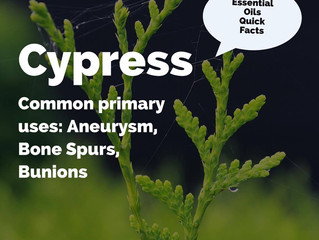 Essential Oil Quick Facts: Cypress
