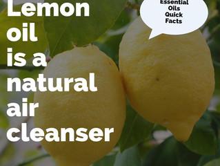 Essential Oil Quick Facts: Lemon