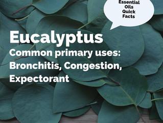 Essential Oil Quick Facts: Eucalyptus