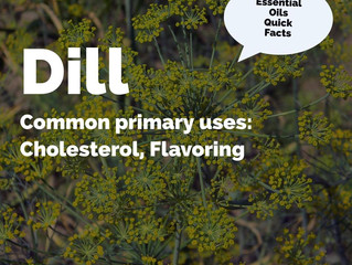 Essential Oil Quick Facts: Dill