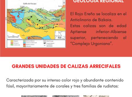 XIII GeoCarnaval