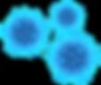 kisspng-microorganisms-fungi-bacteria-pa