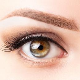Female eye with long eyelashes, beautifu