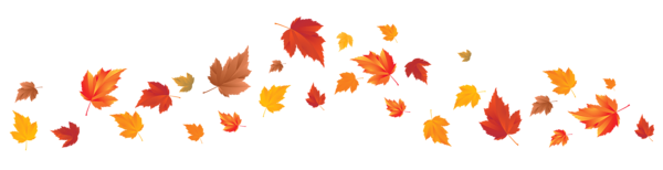 Fall_Leaves_PNG_Image-1_edited.png